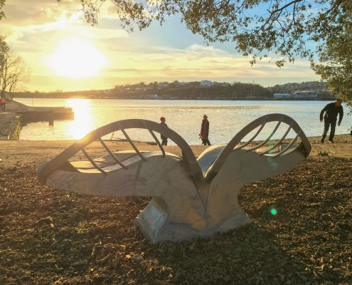 Giant leaf bench made of oak and metal on the side of the Plym Estuary at sunset