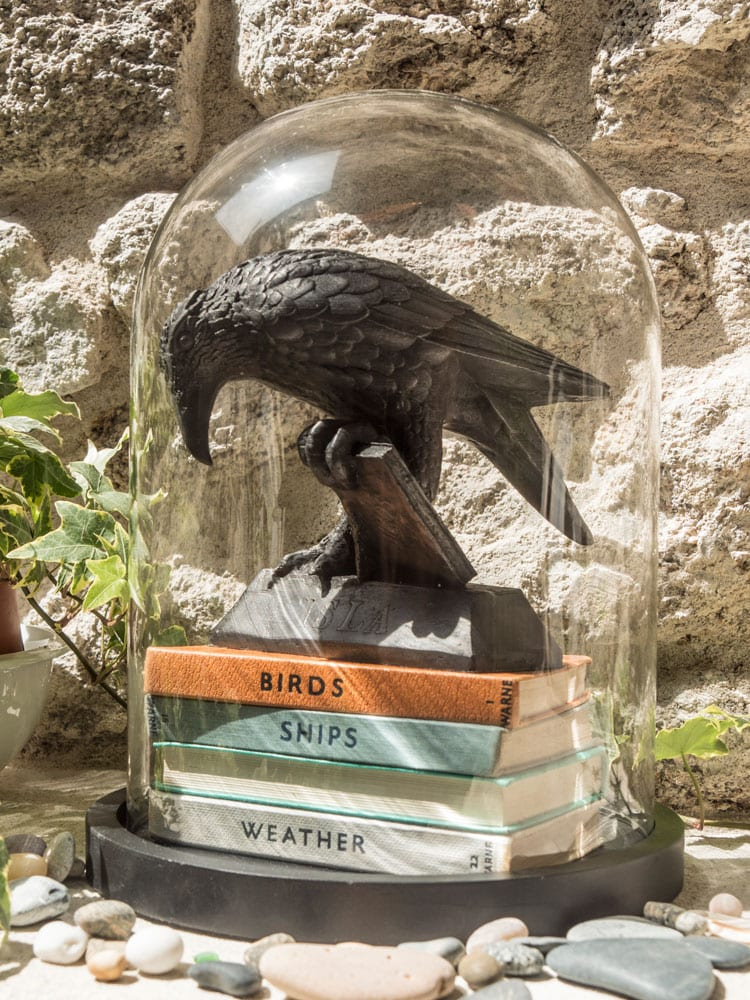 Isla Rook With A Book Statue in dome display