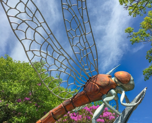 An upward view of a giant dragonfly sculpture created by Thrussells. Made from copper and galvanised steel. Blue sky and foliage in background