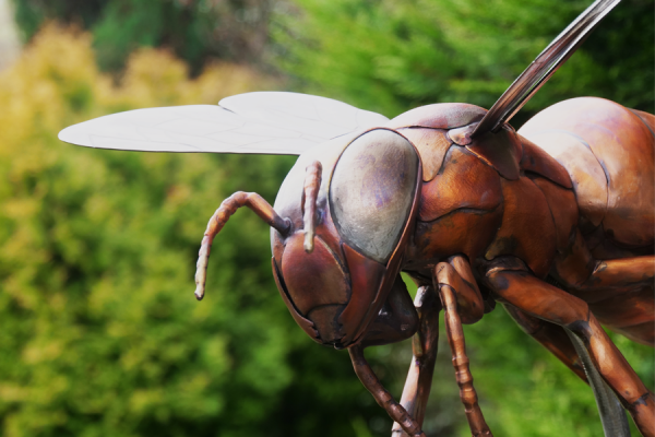 Copper Bee sculpture outdoors with greenery. Made by Thrussells