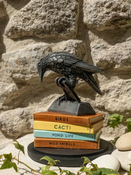 Rook with collection of vintage books - Thrussells