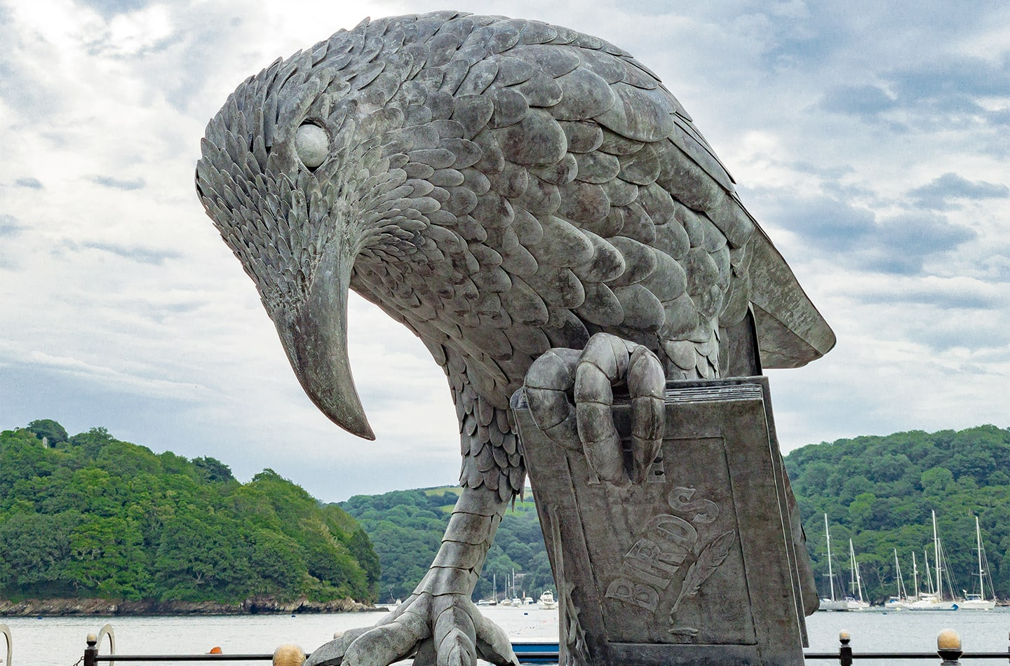 Thrussells Rook With A Book - Fowey