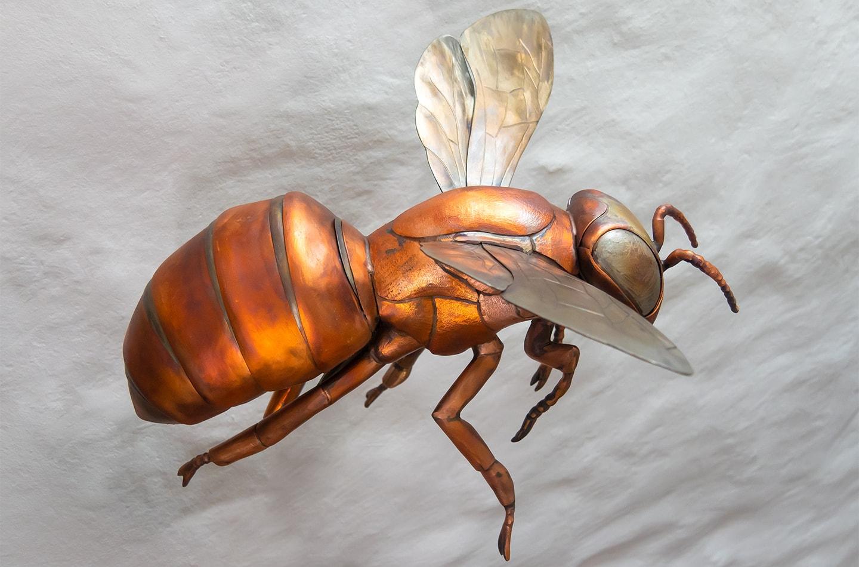 Thrussells Copper Bee